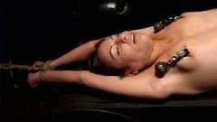 Amber Rayne Stetched On The Rack, And Whipped